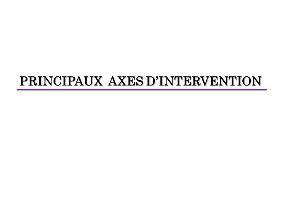 PRINCIPAUX AXES D'INTERVENTION
