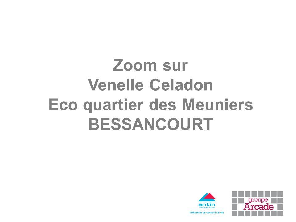 Zoom sur Venelle Celadon Eco quartier des Meuniers BESSANCOURT
