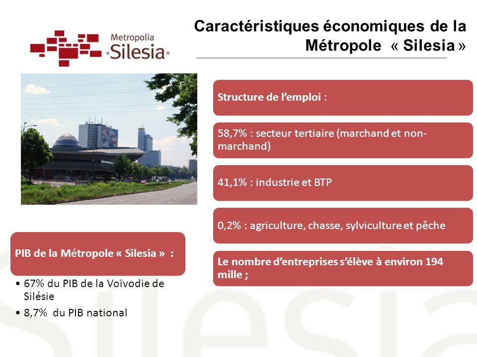 Caractéristiques économiques de la Métropole « Silesia » Structure de l'emploi : 58,7% : secteur tertiaire (marchand et non- marchand) 41,1% : industrie et BTP0,2% : agriculture, chasse, sylviculture et pêche Le nombre d'entreprises s'élève à environ 194 mille ; PIB de la Métropole « Silesia » : 67% du PIB de la Voïvodie de Silésie 8,7% du PIB national