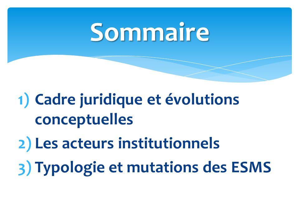 1)Cadre juridique et évolutions conceptuelles 2)Les acteurs institutionnels 3)Typologie et mutations des ESMS Sommaire