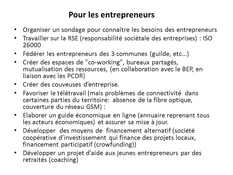 Organiser un sondage pour connaître les besoins des entrepreneurs Travailler sur la RSE (responsabilité sociétale des entreprises) : ISO 26000 Fédérer