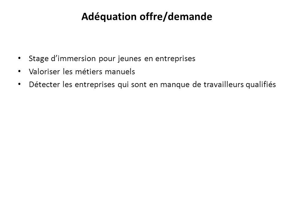 Adéquation offre/demande Stage d'immersion pour jeunes en entreprises Valoriser les métiers manuels Détecter les entreprises qui sont en manque de tra