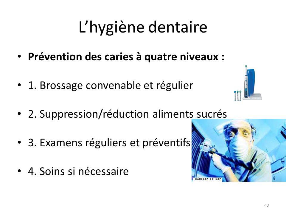 L'hygiène dentaire Prévention des caries à quatre niveaux : 1. Brossage convenable et régulier 2. Suppression/réduction aliments sucrés 3. Examens rég