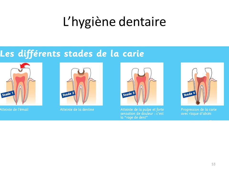 L'hygiène dentaire 53