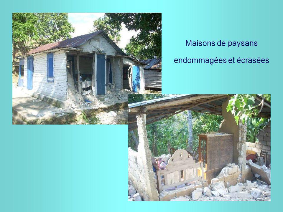 Maisons de paysans endommagées et écrasées