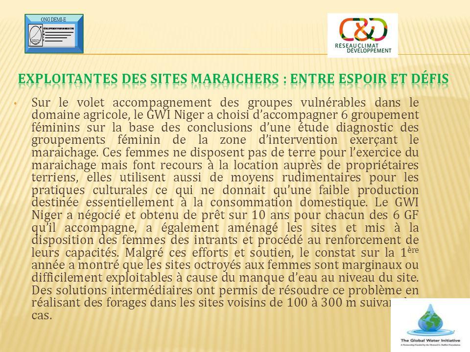 Sur le volet accompagnement des groupes vulnérables dans le domaine agricole, le GWI Niger a choisi d'accompagner 6 groupement féminins sur la base de
