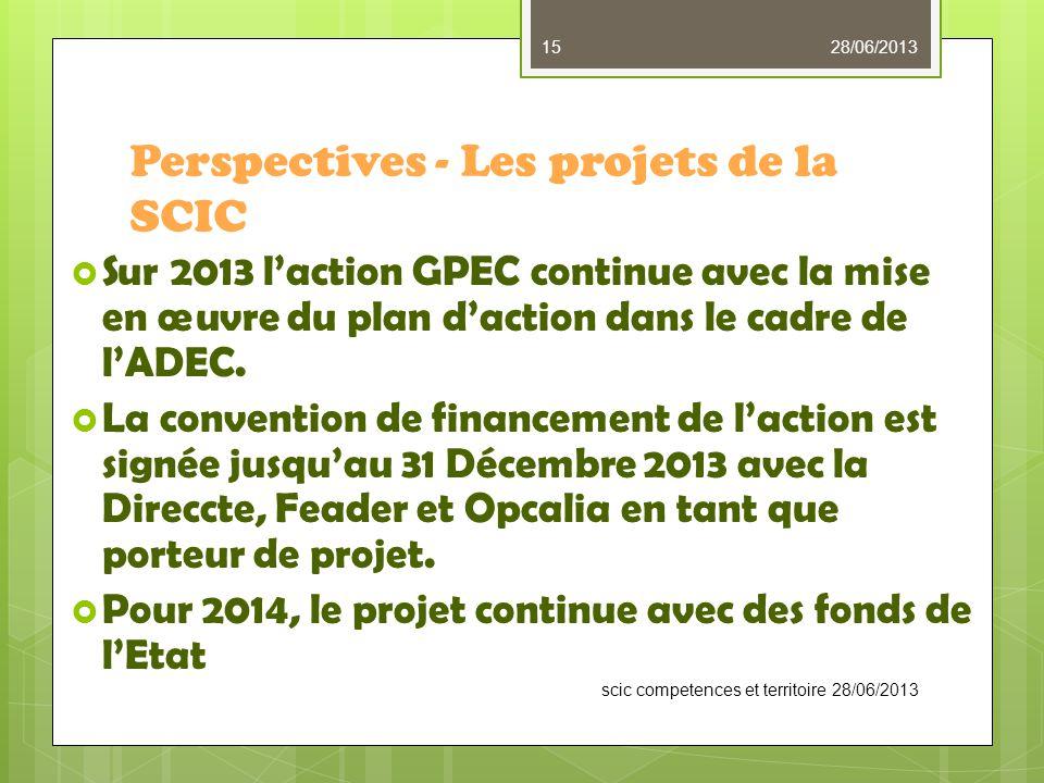 Perspectives - Les projets de la SCIC  Sur 2013 l'action GPEC continue avec la mise en œuvre du plan d'action dans le cadre de l'ADEC.