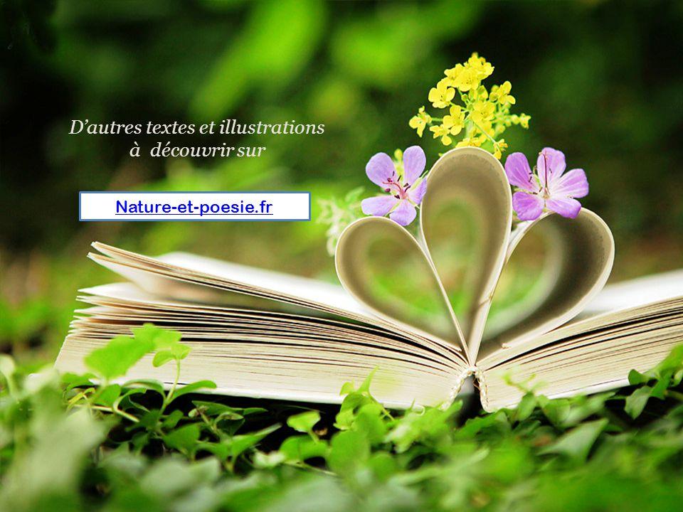 D'autres textes et illustrations à découvrir sur Nature-et-poesie.fr