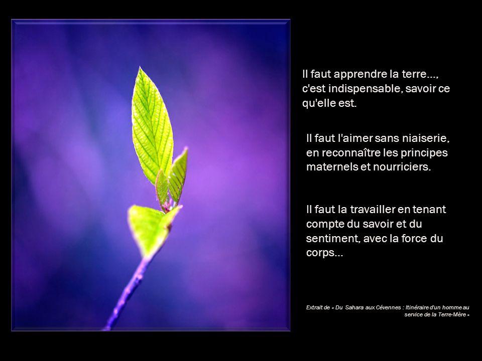 Il faut apprendre la terre…, c est indispensable, savoir ce qu elle est.