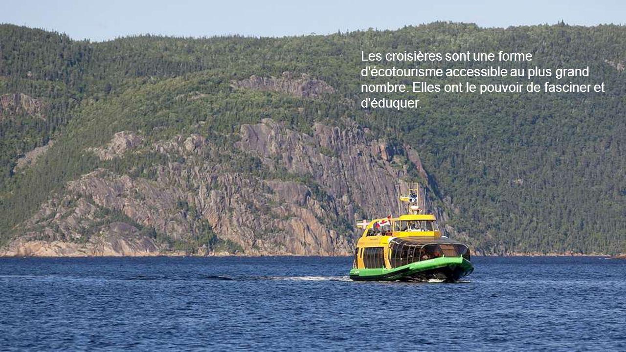 L une des particularités du Saguenay, c est un plan d eau qui offre de l eau douce à la surface et de l eau salée en dessous.