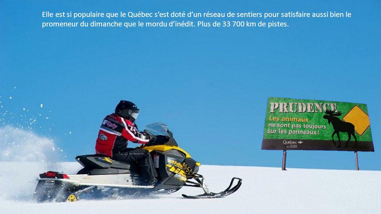 Parfaitement adaptée à l'hiver québécois, la motoneige comble tous les amateurs d'évasion.