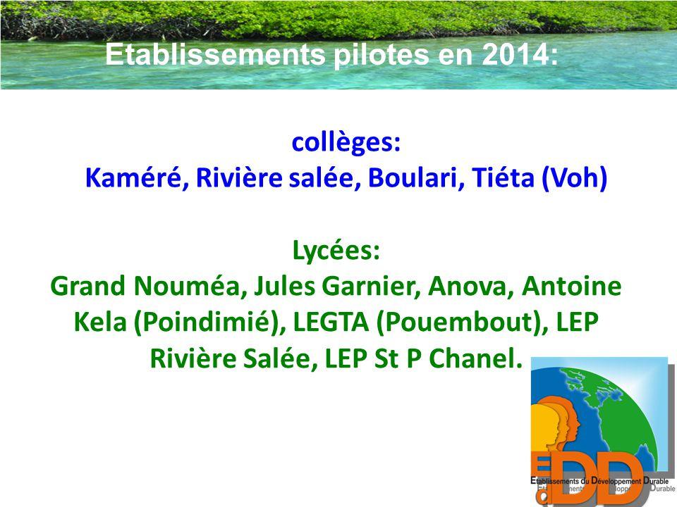Lycées: Grand Nouméa, Jules Garnier, Anova, Antoine Kela (Poindimié), LEGTA (Pouembout), LEP Rivière Salée, LEP St P Chanel. Etablissements pilotes en