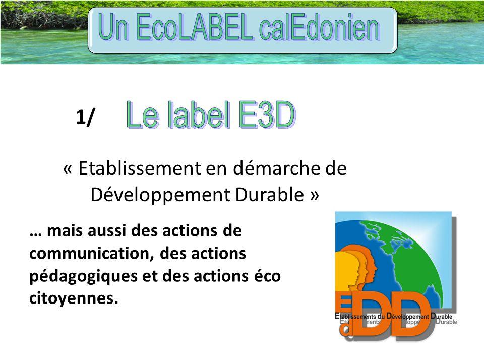 1/ « Etablissement en démarche de Développement Durable » … mais aussi des actions de communication, des actions pédagogiques et des actions éco citoy