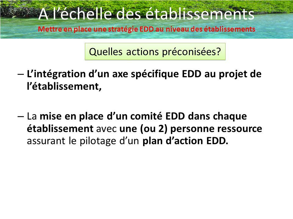 A l'échelle des établissements Mettre en place une stratégie EDD au niveau des établissements Quelles actions préconisées? – L'intégration d'un axe sp