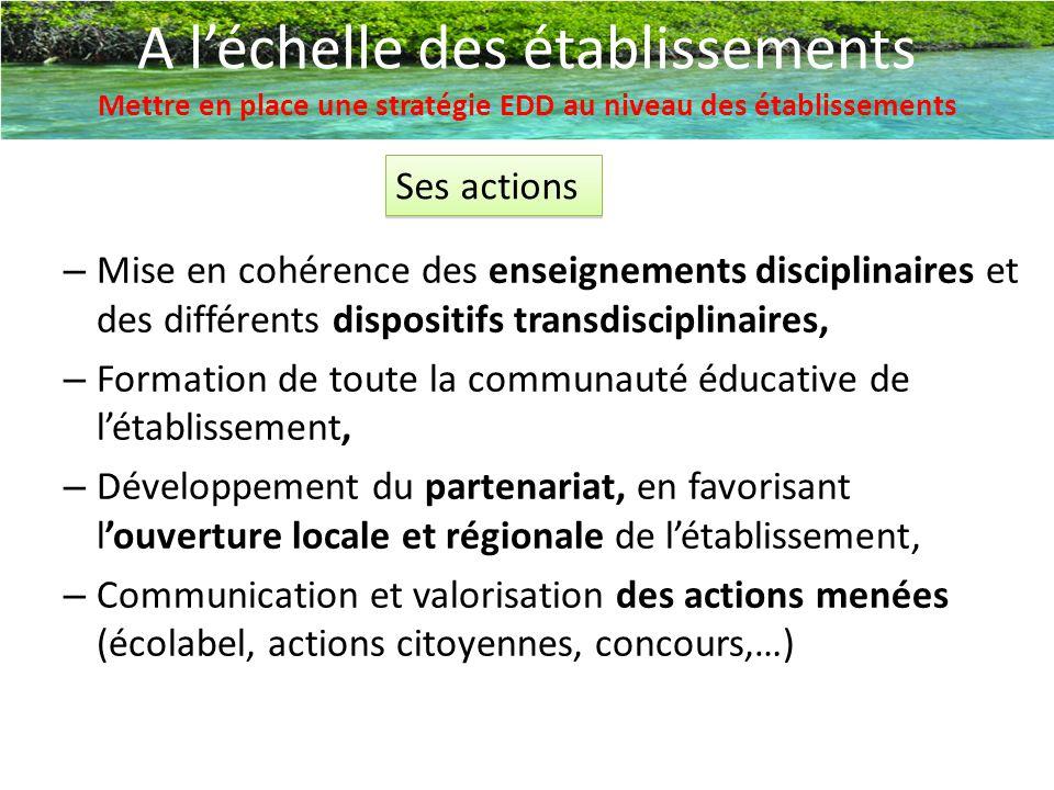 A l'échelle des établissements Mettre en place une stratégie EDD au niveau des établissements Ses actions – Mise en cohérence des enseignements discip