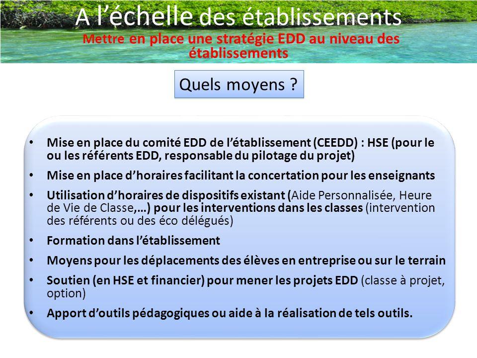 A l'échelle des établissements Mettre en place une stratégie EDD au niveau des établissements Quels moyens ? Mise en place du comité EDD de l'établiss