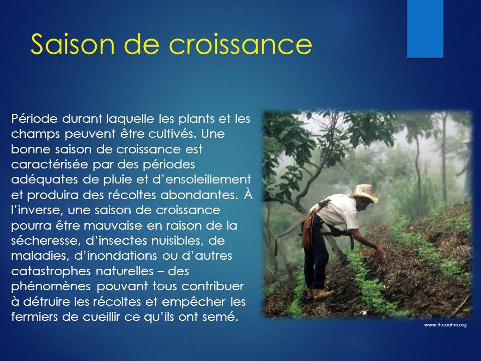 Saison de croissance Période durant laquelle les plants et les champs peuvent être cultivés. Une bonne saison de croissance est caractérisée par des p