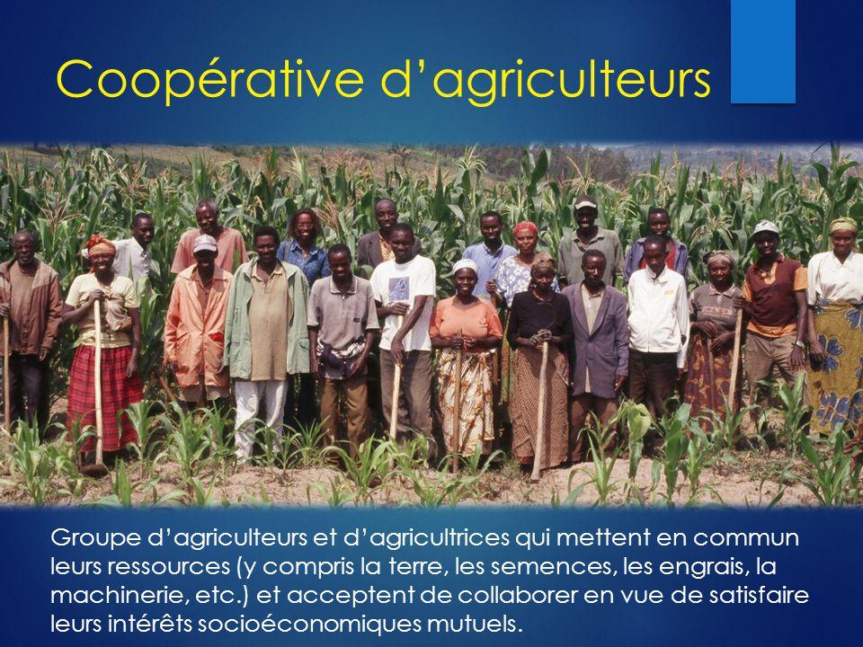 Coopérative d'agriculteurs Groupe d'agriculteurs et d'agricultrices qui mettent en commun leurs ressources (y compris la terre, les semences, les engrais, la machinerie, etc.) et acceptent de collaborer en vue de satisfaire leurs intérêts socioéconomiques mutuels.