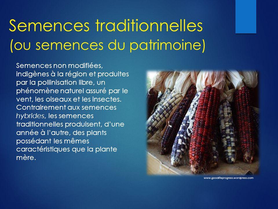 Semences traditionnelles (ou semences du patrimoine) Semences non modifiées, indigènes à la région et produites par la pollinisation libre, un phénomè