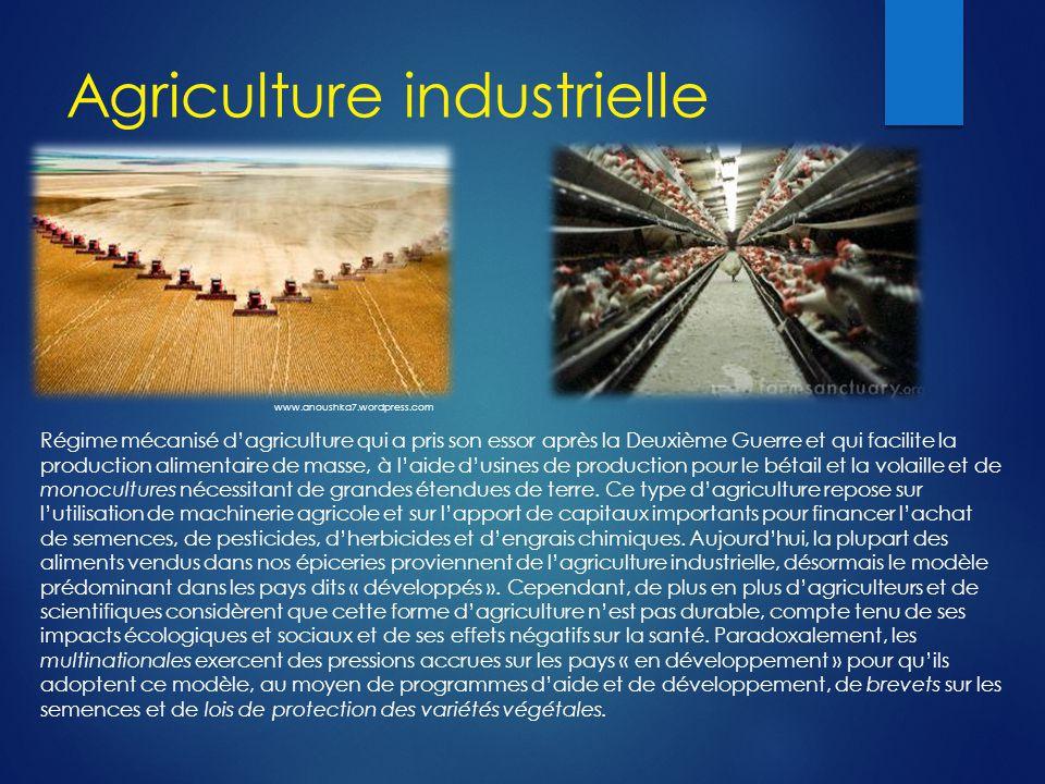 Agriculture industrielle Régime mécanisé d'agriculture qui a pris son essor après la Deuxième Guerre et qui facilite la production alimentaire de masse, à l'aide d'usines de production pour le bétail et la volaille et de monocultures nécessitant de grandes étendues de terre.