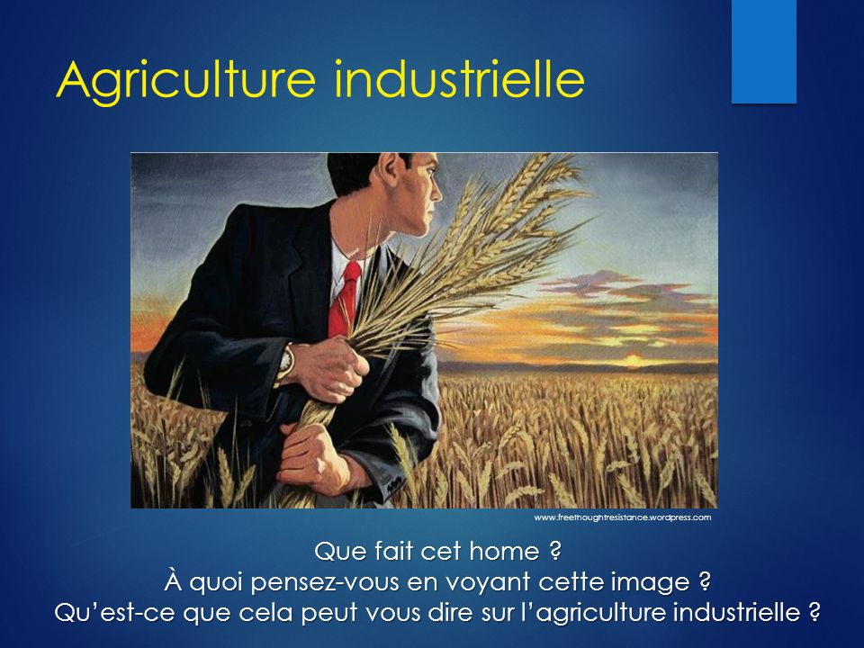 Agriculture industrielle Que fait cet home ? À quoi pensez-vous en voyant cette image ? Qu'est-ce que cela peut vous dire sur l'agriculture industriel
