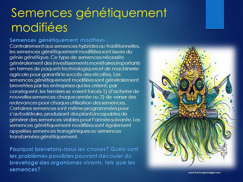 Semences génétiquement modifiées Semences génétiquement modifiées : Semences génétiquement modifiées : Contrairement aux semences hybrides ou traditio