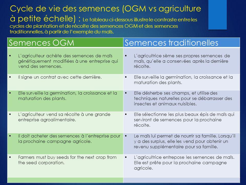Cycle de vie des semences (OGM vs agriculture à petite échelle) : Le tableau ci-dessous illustre le contraste entre les cycles de plantation et de récolte des semences OGM et des semences traditionnelles, à partir de l'exemple du maïs.