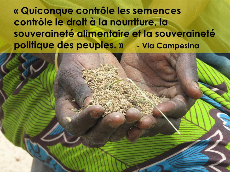 « Quiconque contrôle les semences contrôle le droit à la nourriture, la souveraineté alimentaire et la souveraineté politique des peuples. » - Via Cam