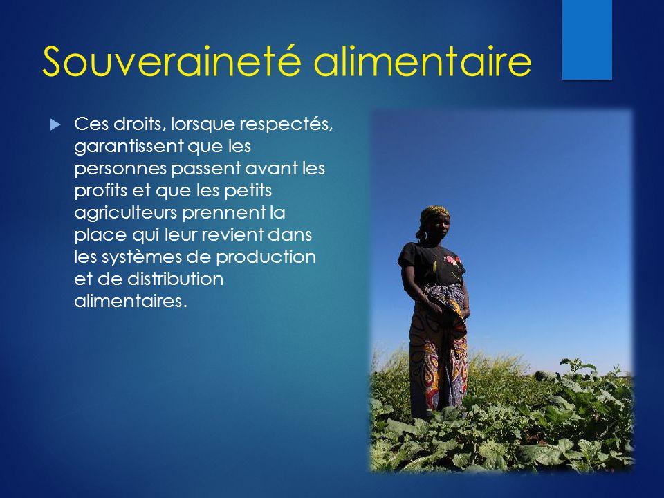 Souveraineté alimentaire  Ces droits, lorsque respectés, garantissent que les personnes passent avant les profits et que les petits agriculteurs pren