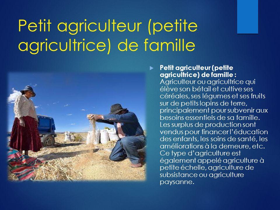 Petit agriculteur (petite agricultrice) de famille  Petit agriculteur (petite agricultrice) de famille : Agriculteur ou agricultrice qui élève son bé