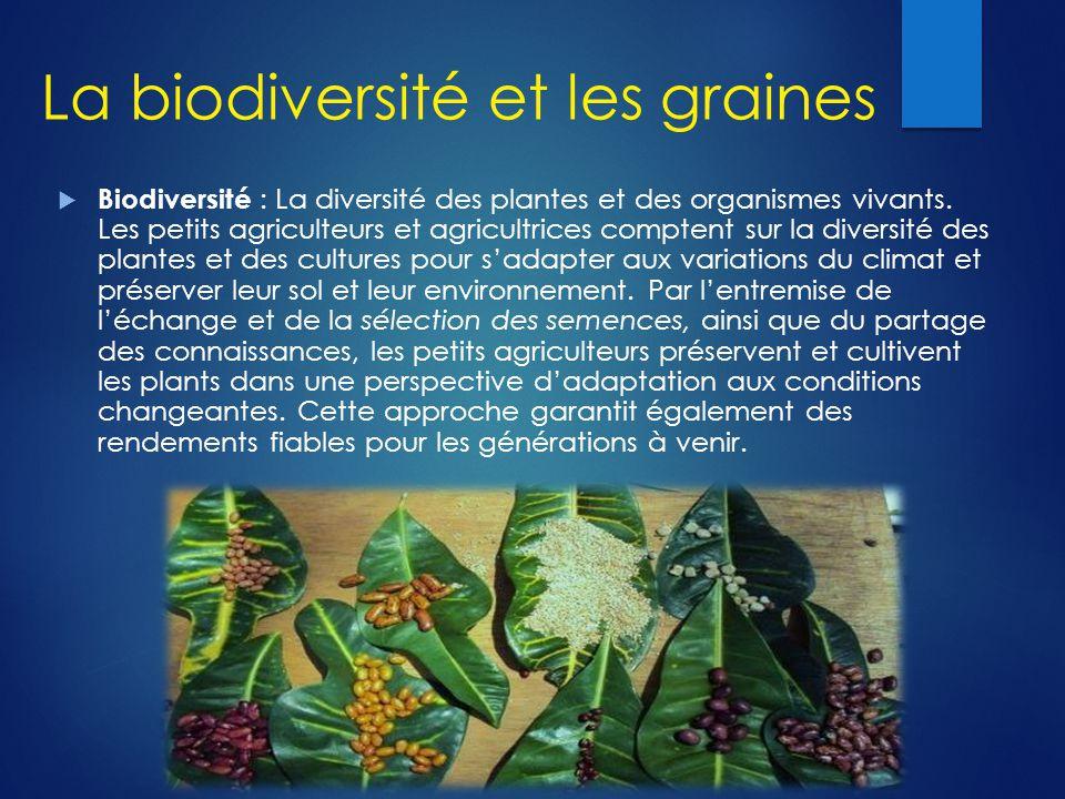 La biodiversité et les graines  Biodiversité : La diversité des plantes et des organismes vivants. Les petits agriculteurs et agricultrices comptent