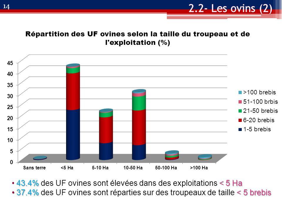 Répartition des UF ovines selon la taille du troupeau et de l exploitation (%) 43.4% < 5 Ha 43.4% des UF ovines sont élevées dans des exploitations < 5 Ha 37.4%< 5 brebis 37.4% des UF ovines sont réparties sur des troupeaux de taille < 5 brebis 14