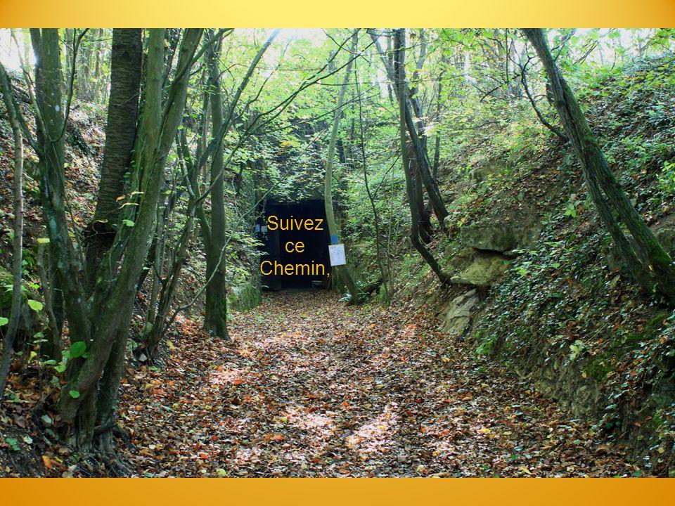Suivez ce Chemin,
