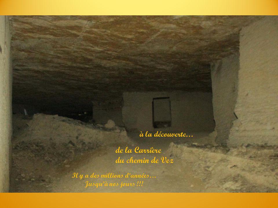 à la découverte… de la Carrière du chemin de Vez Il y a des millions d'années… Jusqu'à nos jours !!!