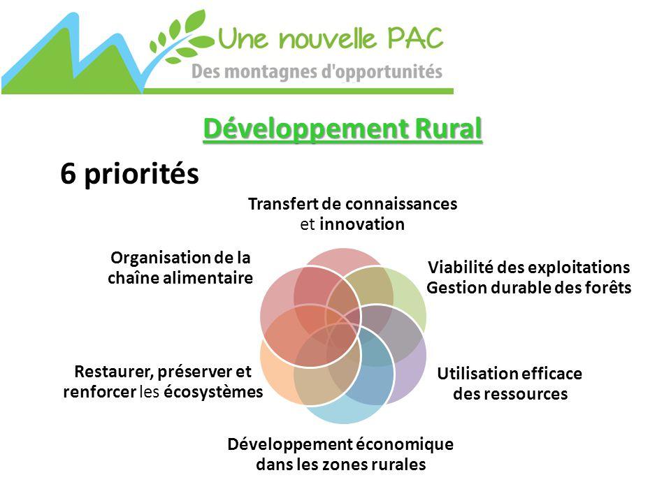 Transfert de connaissances et innovation Viabilité des exploitations Gestion durable des forêts Restaurer, préserver et renforcer les écosystèmes Développement économique dans les zones rurales Utilisation efficace des ressources Organisation de la chaîne alimentaire Développement Rural 6 priorités