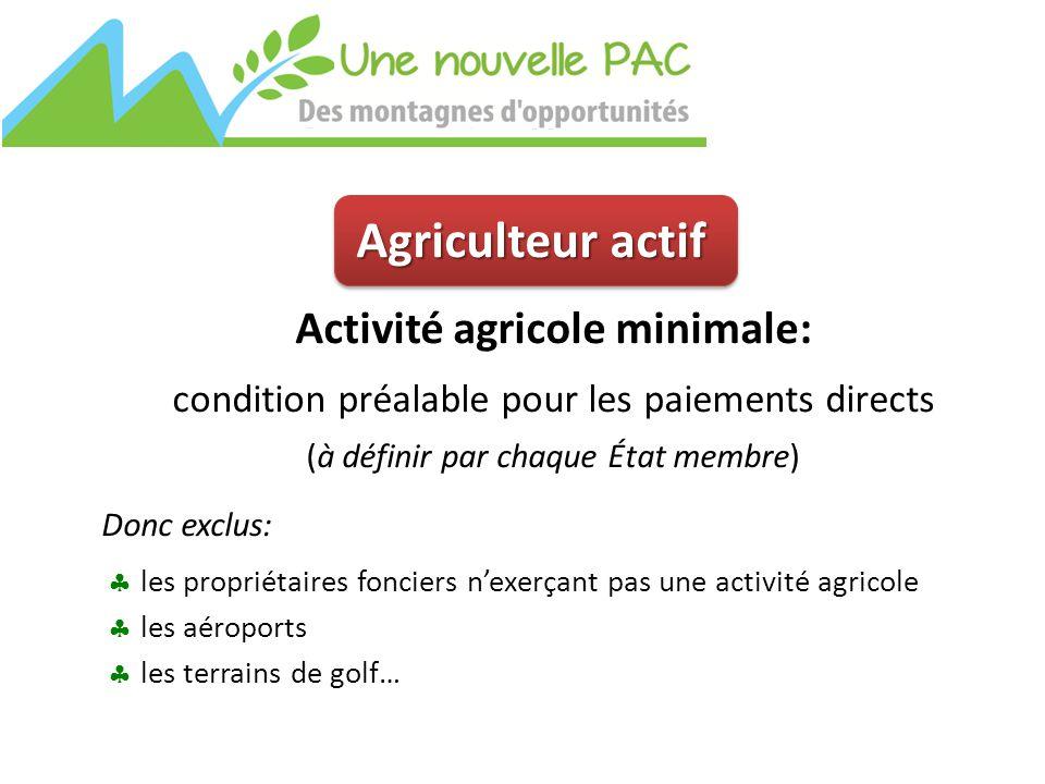 Agriculteur actif Activité agricole minimale: condition préalable pour les paiements directs (à définir par chaque État membre) Donc exclus:  les propriétaires fonciers n'exerçant pas une activité agricole  les aéroports  les terrains de golf…