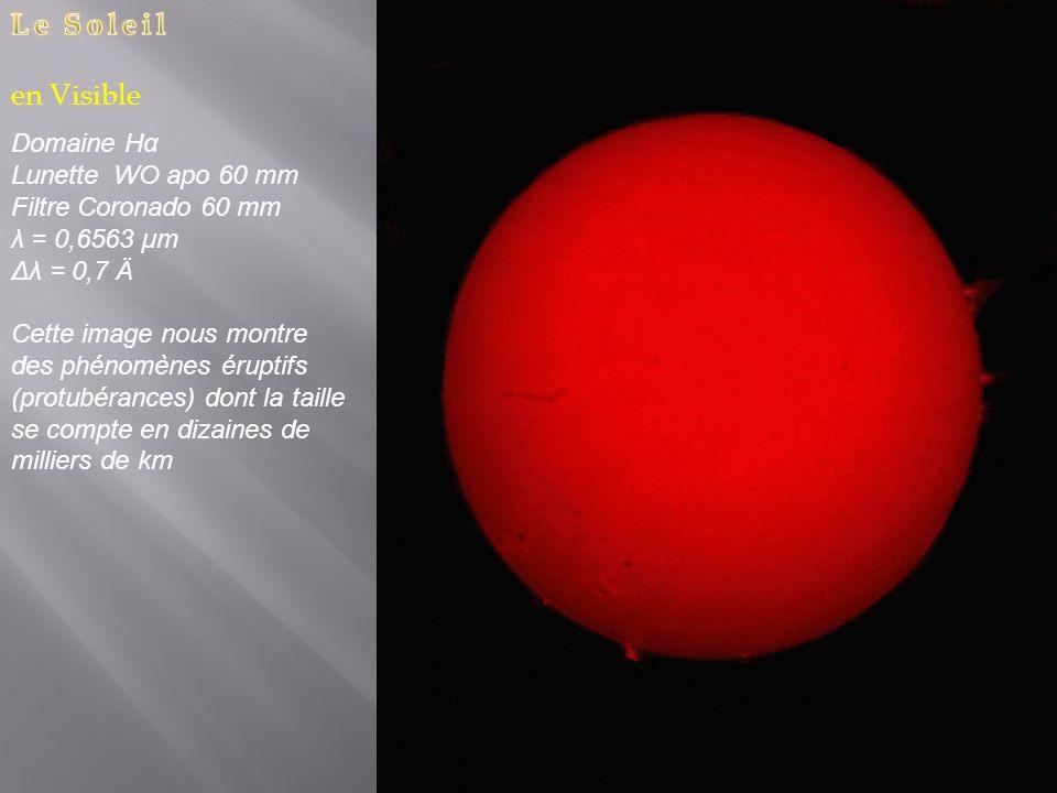 Domaine Hα Lunette WO apo 60 mm Filtre Coronado 60 mm λ = 0,6563 µm Δλ = 0,7 Ä Cette image nous montre des phénomènes éruptifs (protubérances) dont la taille se compte en dizaines de milliers de km