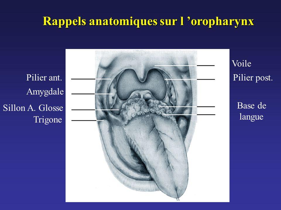 Pilier ant. Amygdale Sillon A. Glosse Trigone Voile Pilier post. Base de langue Rappels anatomiques sur l 'oropharynx