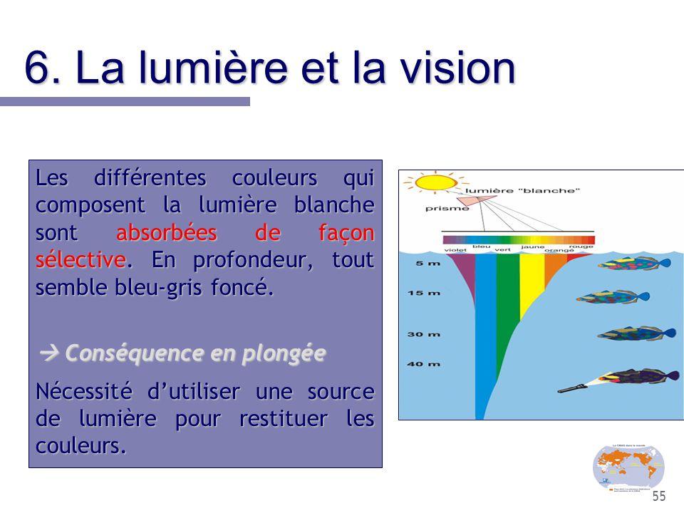 55 6. La lumière et la vision