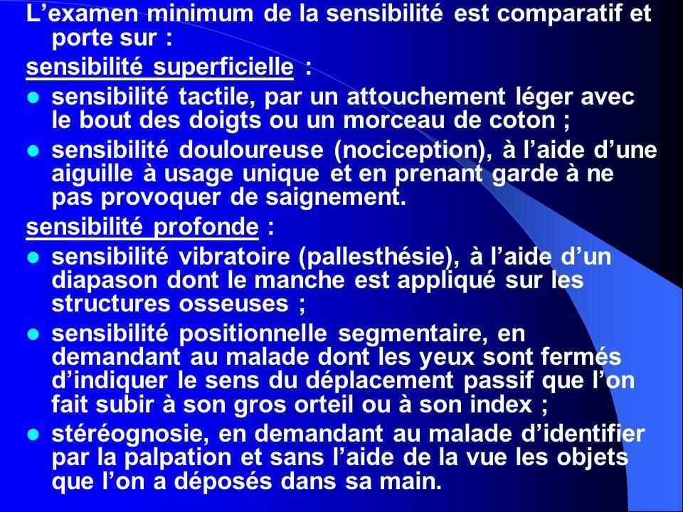 L'examen minimum de la sensibilité est comparatif et porte sur : sensibilité superficielle : sensibilité tactile, par un attouchement léger avec le bo