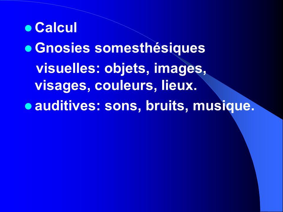 Calcul Gnosies somesthésiques visuelles: objets, images, visages, couleurs, lieux.