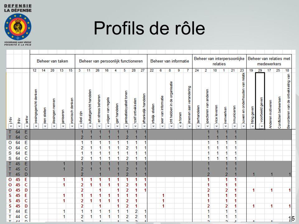 Profils de rôle 15
