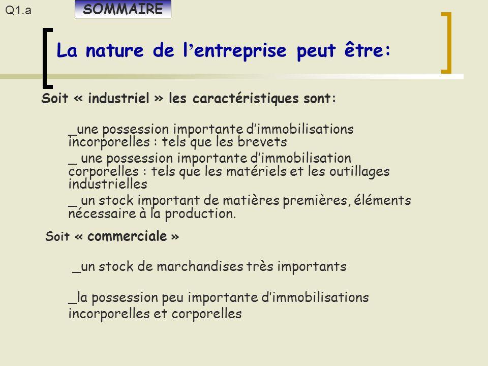 _une possession importante d'immobilisations incorporelles : tels que les brevets _ une possession importante d'immobilisation corporelles : tels que
