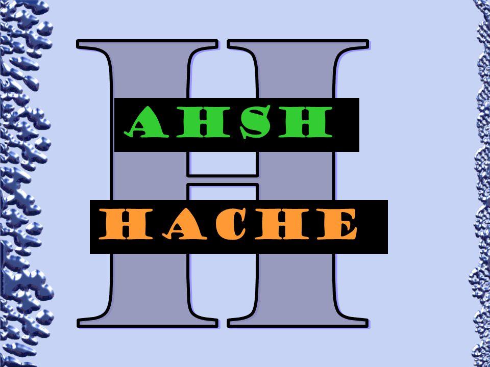 AHsH hAcHe