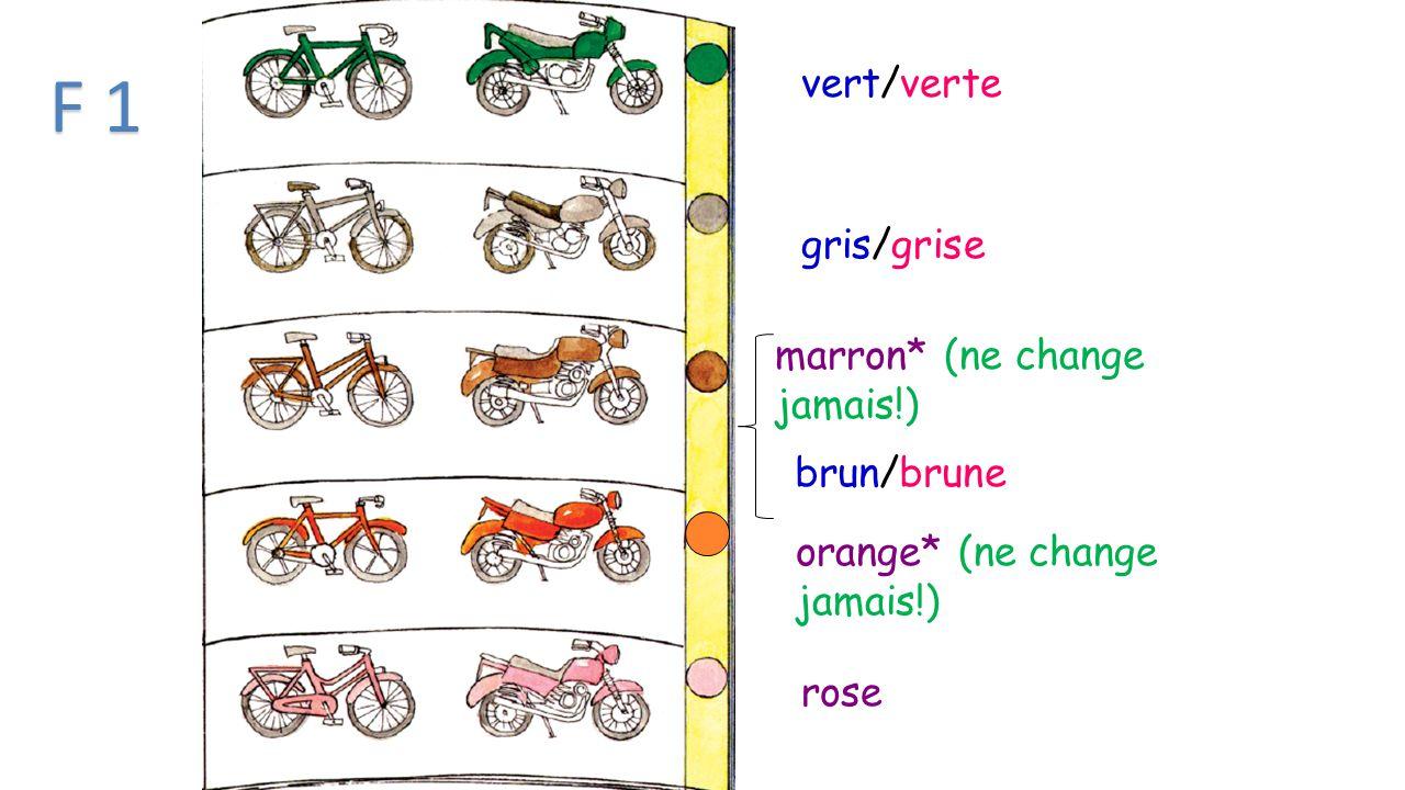 vert/verte gris/grise marron* (ne change jamais!) orange* (ne change jamais!) rose brun/brune F 1