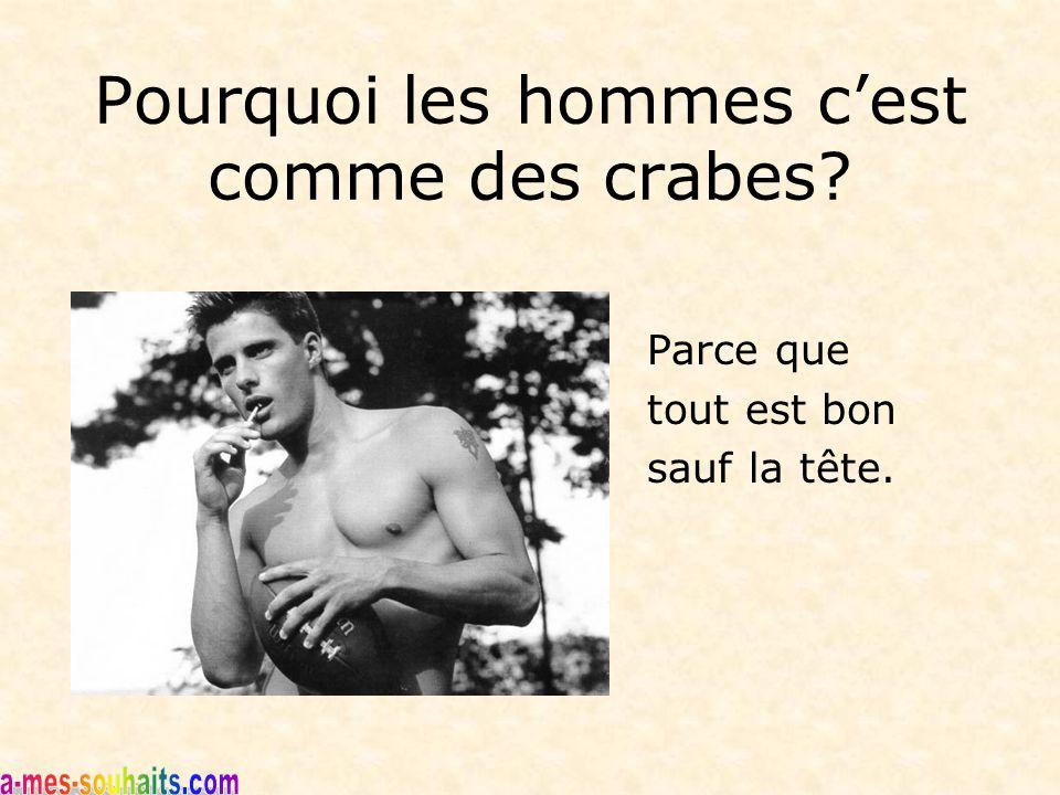 Pourquoi les hommes c'est comme des crabes? Parce que tout est bon sauf la tête.
