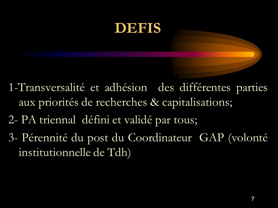 DEFIS 1-Transversalité et adhésion des différentes parties aux priorités de recherches & capitalisations; 2- PA triennal défini et validé par tous; 3- Pérennité du post du Coordinateur GAP (volonté institutionnelle de Tdh) 7