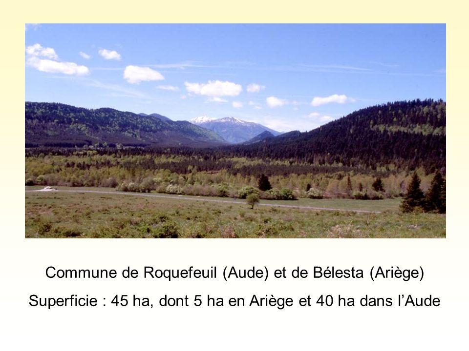 Commune de Roquefeuil (Aude) et de Bélesta (Ariège) Superficie : 45 ha, dont 5 ha en Ariège et 40 ha dans l'Aude