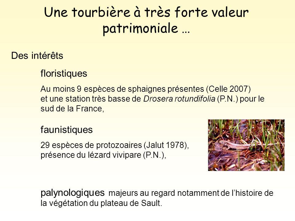 Des intérêts floristiques Au moins 9 espèces de sphaignes présentes (Celle 2007) et une station très basse de Drosera rotundifolia (P.N.) pour le sud