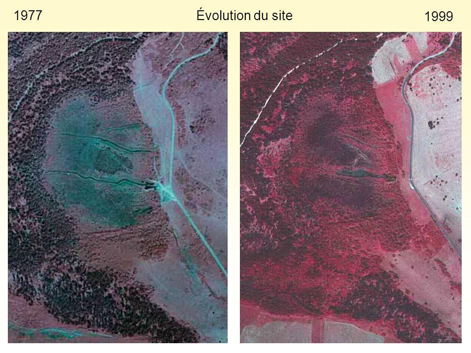 Évolution du site 1977 1999